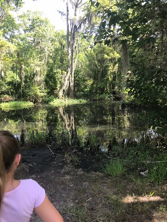 Fairview-Riverside State Park (Madisonville) - Book in Destination