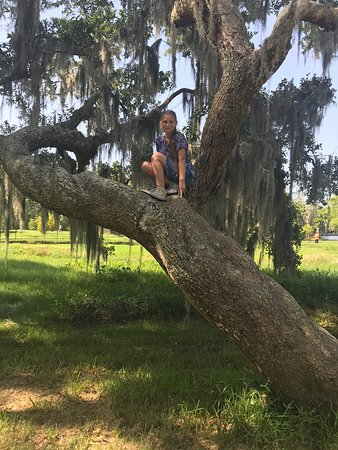 Fairview-Riverside State Park (Madisonville) - 2019 All You