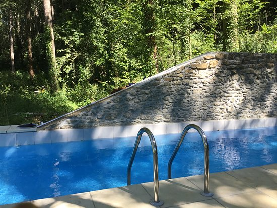 La Forge, Francia: Stone pool -9X3 mtrs in our very large gardens.. we have a 50 sq mtrs timber deck with furniture. There are views into our forest from the pool