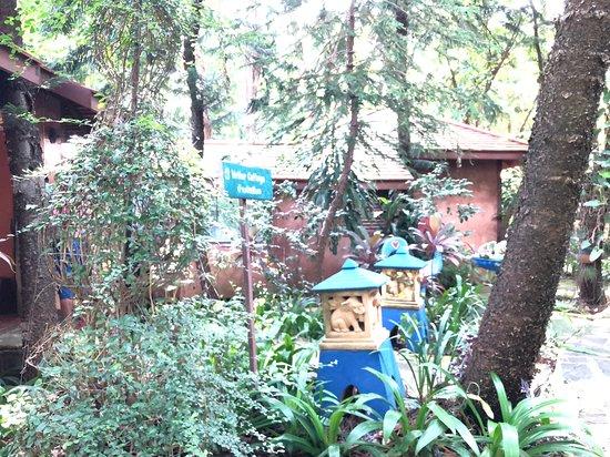 Nakhon Ratchasima Province, Thaïlande : Writer Cottage