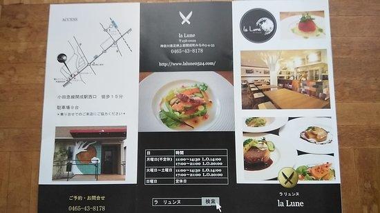 Kaisei-machi, Japan: 店のパンフ-1
