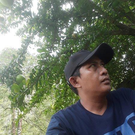 South Sulawesi, Indonésie: Dario tour sulawesi