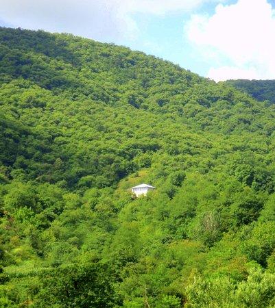 Ubisa, Georgia