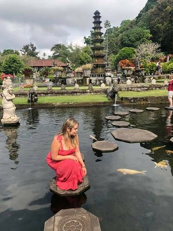 Tirta Gangga: Lets visit to bali...for more the info please WhatsApp +6281933073883 Email : suarjana.kpl@gmail.com