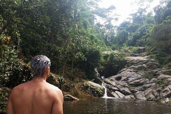 Paratyからの滝のジャングルジープアドベンチャーとCachacaツアー