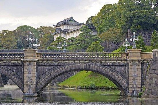 Visita privada personalizada: Tokio...
