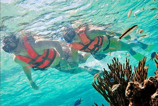 Snorkel de medio día en Puerto Morelos