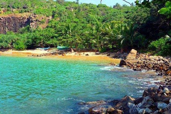 Galle Fort & Jungle Beach Dagstur fra...