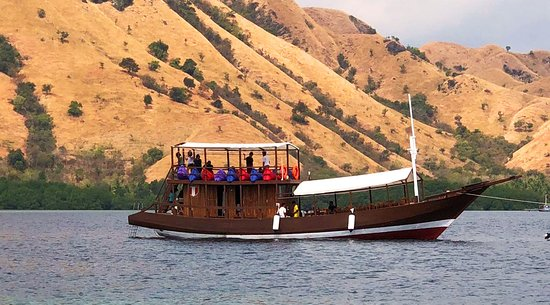 Alba Cruise