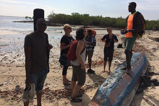 Din profesjonelle reiseguide i Senegal