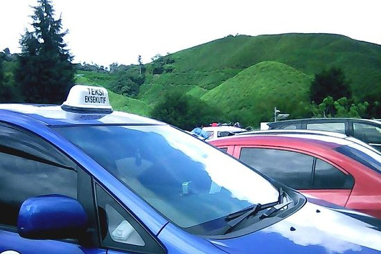Private: Cameron Highland Day Tour
