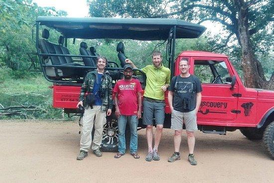 Safari de Udawalawe desde Ella