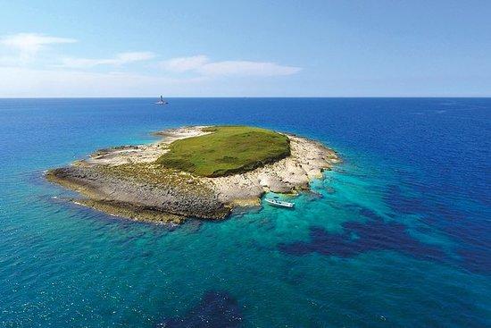 Brijuni, Dinosaur Island & Kamenjak...