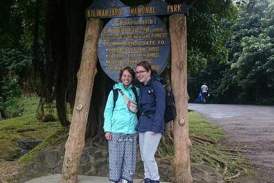 キリマンジャロ国立公園デイトリップ