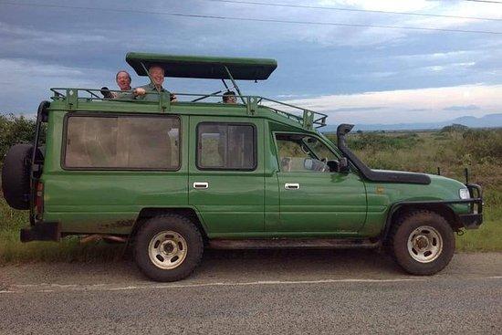 アカゲラ国立公園の1日ビッグ5&ビッグキャット