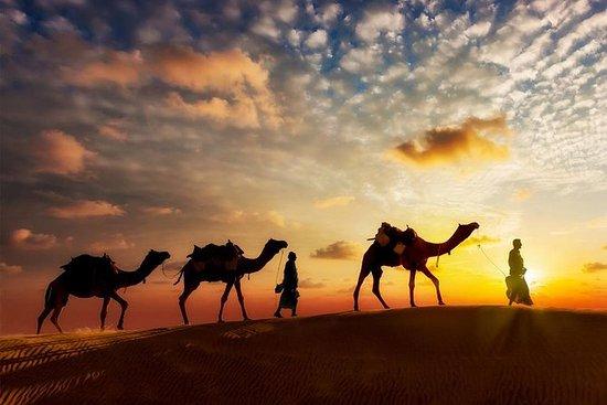 Silk Road- Xi'an, Tianshui, Wuwei...