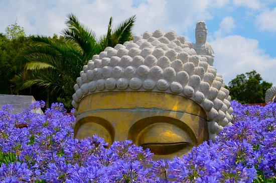 Bacalhoa Buddha Eden照片