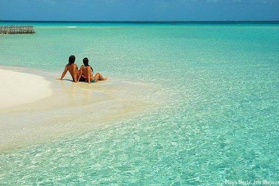 Découvrez la beauté d'Isla Mujeres avec...