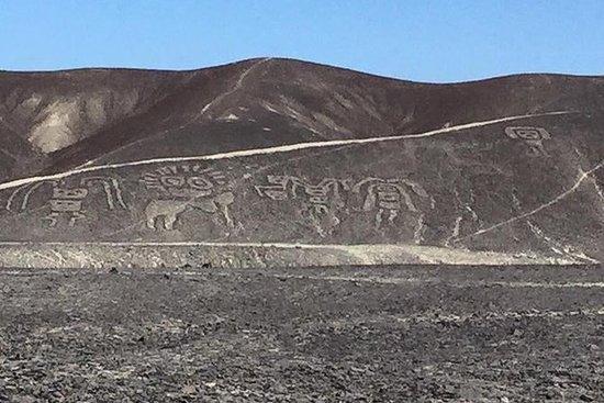 Nazca linjer full erfaring inkludert...