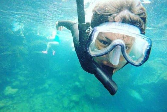 Tour a Tuneles e Cabo Rosa (Isola