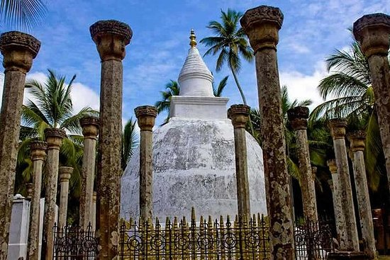Den originale Sri Lanka Island Tour...