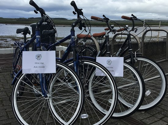 Harbour Cycle Hire