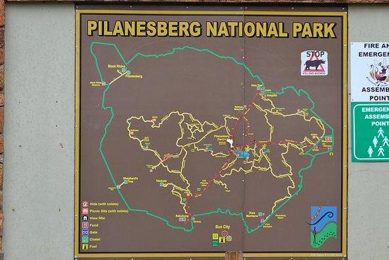 从约翰内斯堡/桑顿到匹兰斯堡国家公园的私人之旅