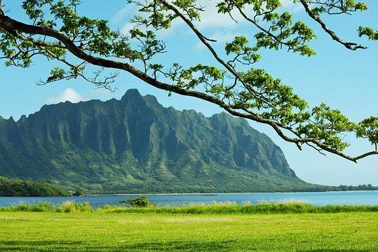 Groene en blauwe privétour in Oahu