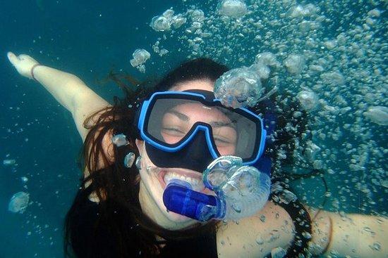 Snorkel en Granada con Dive Grenada...