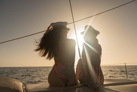 Tour Premium de Vida Marina: 4 horas...