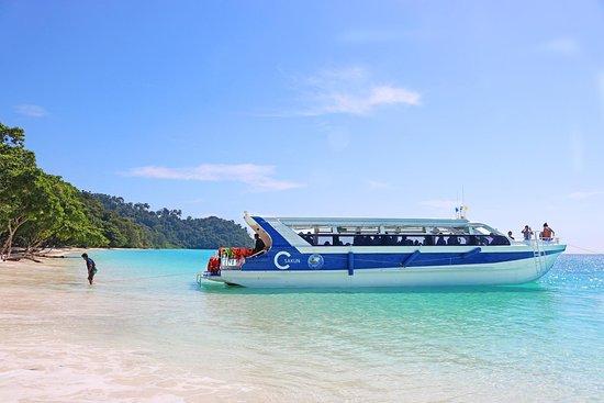 Sea Life Lanta Tours