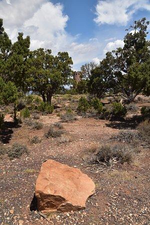 Desert View Trading Post