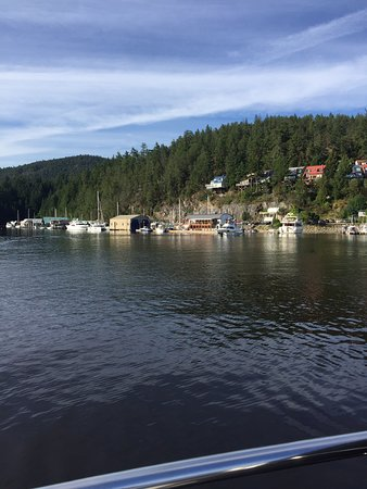 Secret Cove, Kanada: Lovely little cove. Good overnight anchorage and with two fuel docks, well stocked grocery/ fishing supply store and very nice cafe. Perfect for paddle boarding or kayaking.