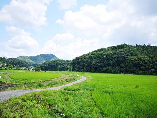 Tanabe Farm