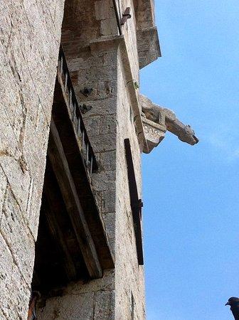 Gargoyle in cima alla Torre. Non mi sono accorta mentre scattavo di immortalare anche un piccione nell'angolo in basso a destra...Luglio 2019