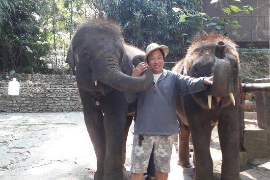 Tom Chiangmai Driver