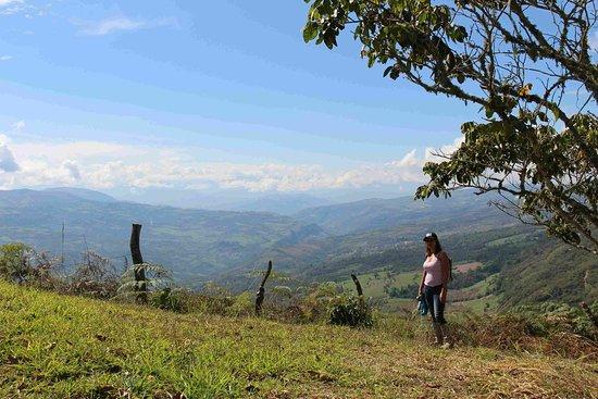 Pinchote, Колумбия: Yerba Santa, vista hasta El Paramo y El Valle de San Jose