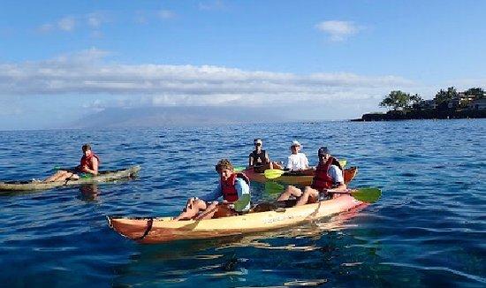Hawaiian Paddle Sports (Kihei) - 2019 All You Need to Know