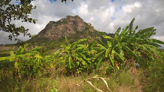 Провинция Нампула, Мозамбик: Hiking in the heart of nature