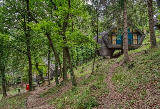 Monteggio, Svizzera: Several of our bungalows in the forest!