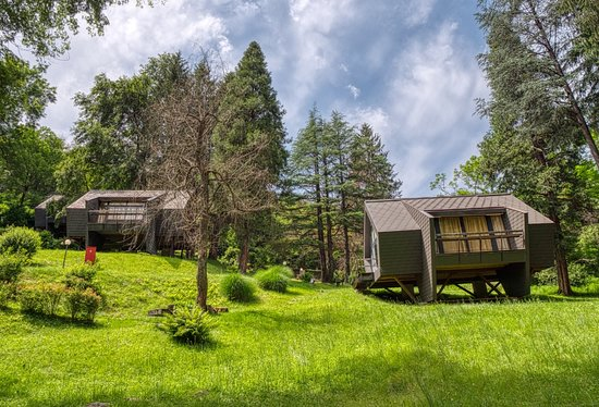 Monteggio, Svizzera: Two Bungalows that are nearer to the pool!