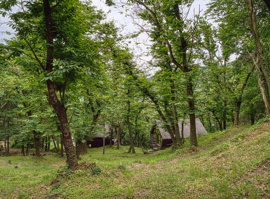 Monteggio, Svizzera: Some more Bungalows camouflaged in the woods!