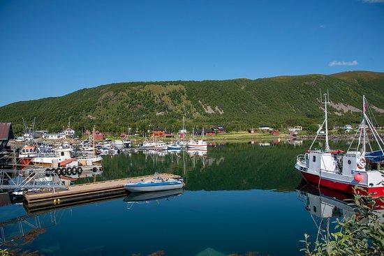 Hadsel Municipality, النرويج: Småbåthavn