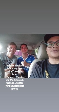 With traveler from France for Kuala Gandah Elephant Sanctuary Tour. #taximpvkl #ANprivatetoursmalaysia #viator #tripadvisorexperience