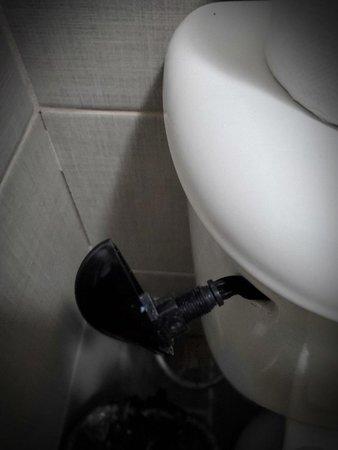 broken toilet handle