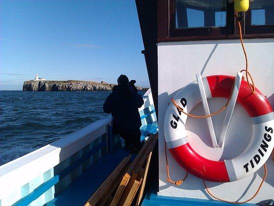 Billy Shiel's Boat Trips