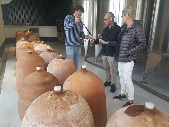 Ventenac-Cabardes, Frankrike: Amphora Wines, what a treat