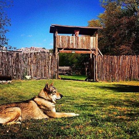 Villa Adriana, Taliansko: Learn to fight in our gladiator school