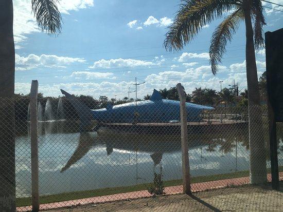 Buri, SP: Parque Do Tubarão