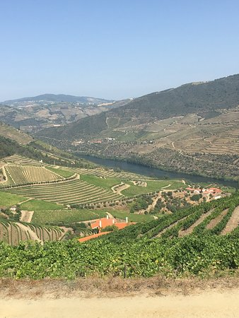 Ervedosa do Douro, Portugalia: One of the amazing views